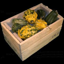 Cassa per regali - Laterale sinistro con frutta