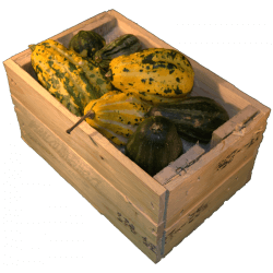 Cassa per regali - Laterale destro con frutta