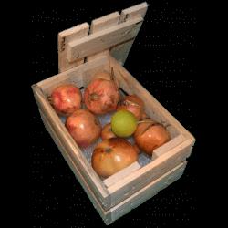 Cassa per fiori - Laterale destro con frutta