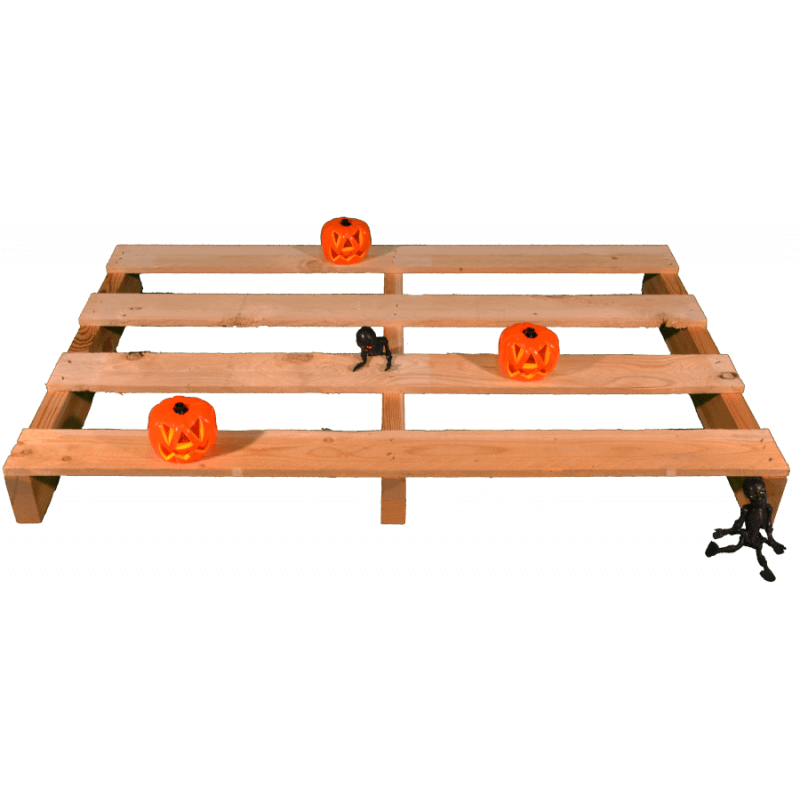 Pallet a 2 vie leggero GRATIS (promo halloween)