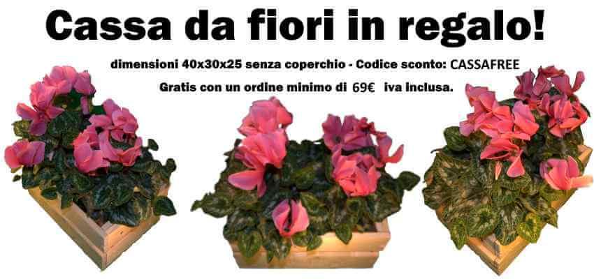 cassa fiori free