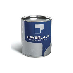 Water-based paint for...